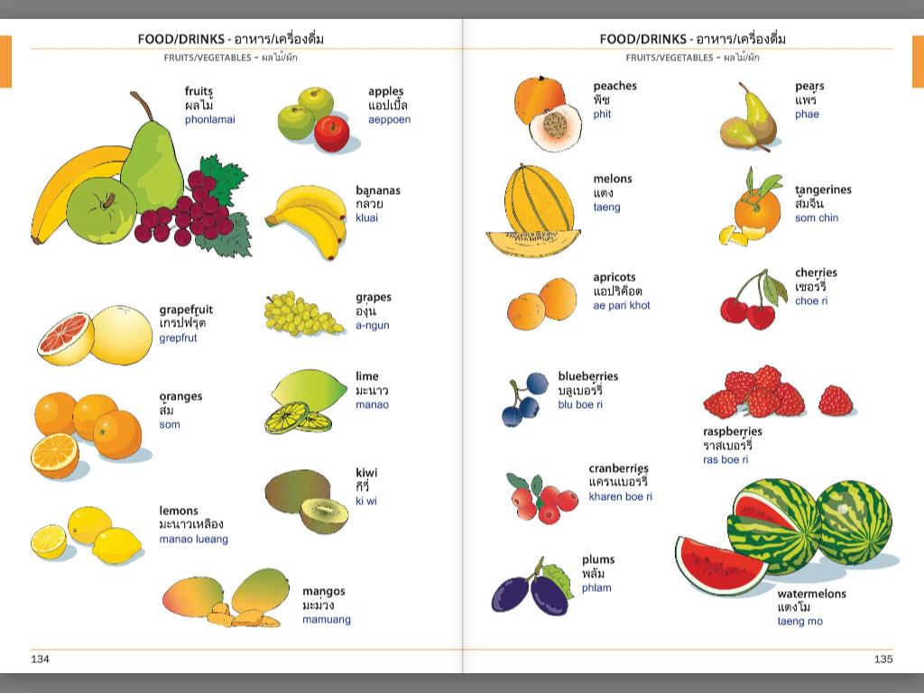 Visual Phrase Book Thai